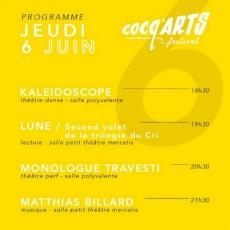 Jeu 06.06 • 21:30 • Matthias Billard @ Cocq'Arts Festival • Théâtre Mercelis