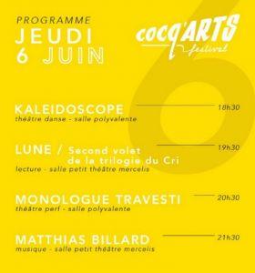 20190606-Matthias-Billard-CocqArts-Festival-Mercelis-1000px-8db80f9e35e89052be59e8eb50e22d79.jpg